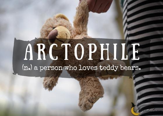 Arctophile