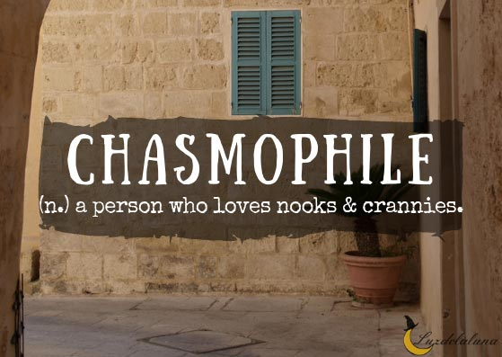 Chasmophile
