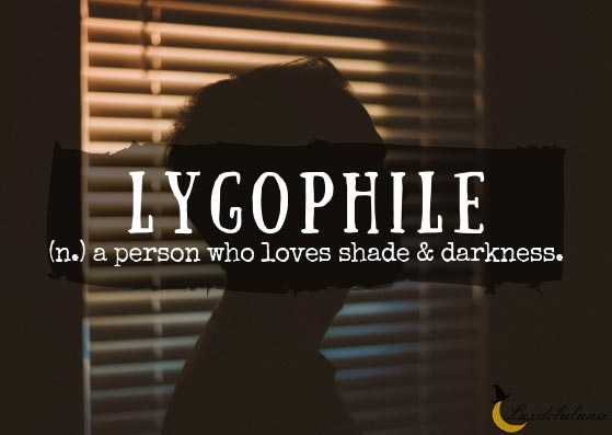 Lygophile