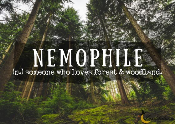 Nemophile
