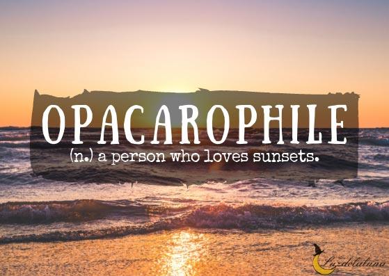 Opacarophile