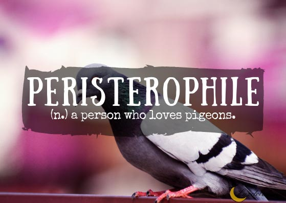 Peristerophile