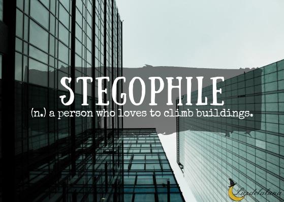 Stegophile