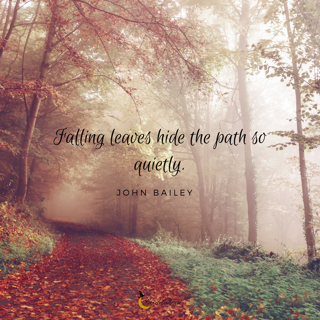20 Beautiful Autumn Quotes That Will Make You Fall In Love With Fall All Over Again